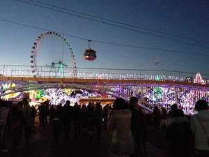 201312_irumination.JPG